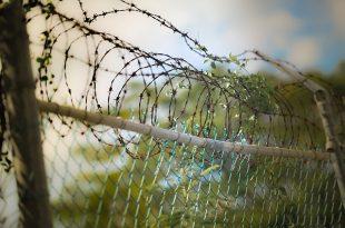 משמעות בבית כלא