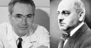 Viktor Frankl and Alfred Adler
